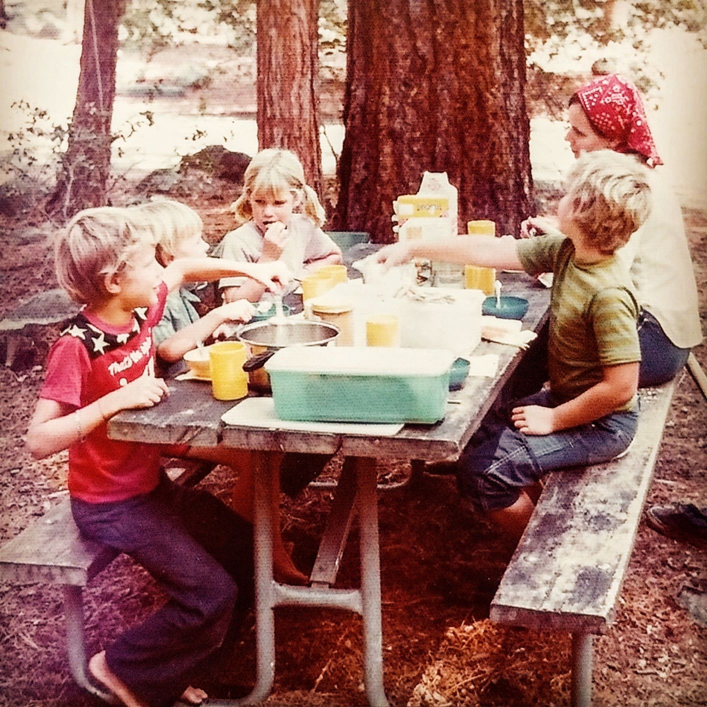 Roland's family on a picnic