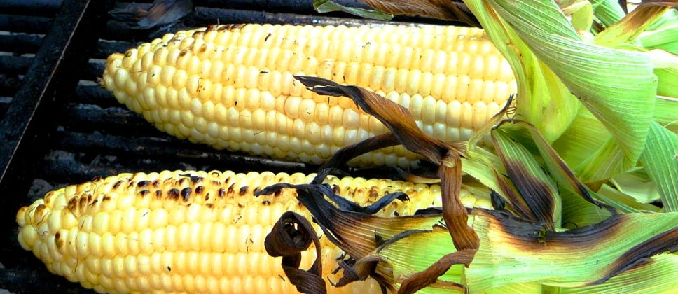 grilled corn banner